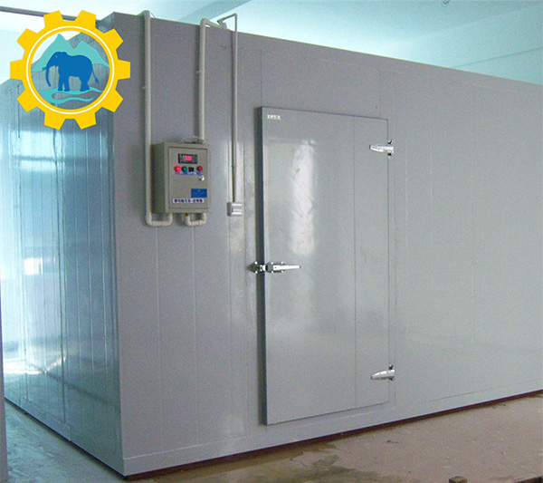 Deep Freezer Cold Room