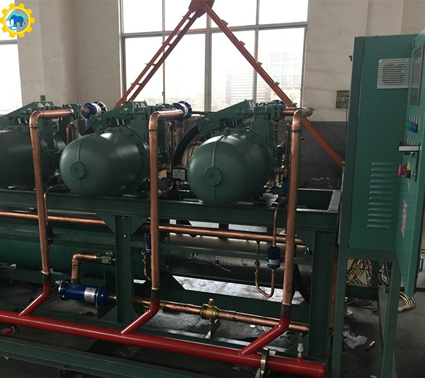 Professional Bitzer Screw Reciprocating Parallel Compressor Condensing for Cooling System Cold Room and Cold Storage Refrigeration Unit Equipment