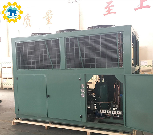 V Shape Box Type Air Cooled Bitzer/Copeland Compressor Refrigeration Condensing Unit for Cold Storage Room