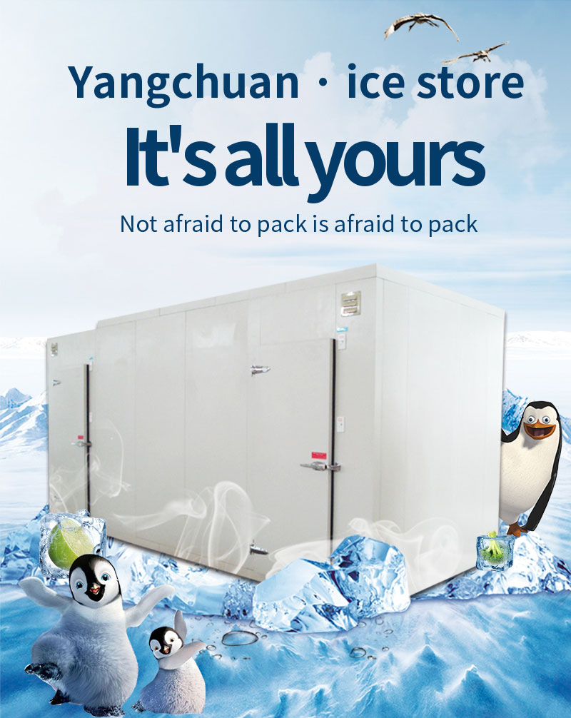 Blast Freezer PU Panel Cold Room for Chiller and Freezer1